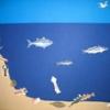 Peix peixet saltironet